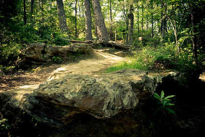Natural Bridge State Park, Kentucky.  Red River Gorge area.