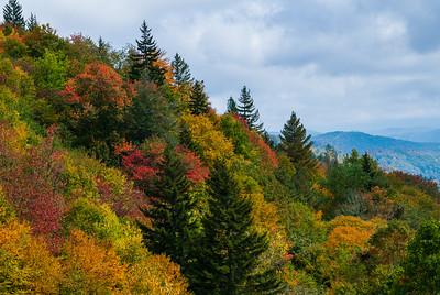 Smoky Mountain Colors
