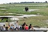 Elephants and tourists, Chobe river cruise, Botswana