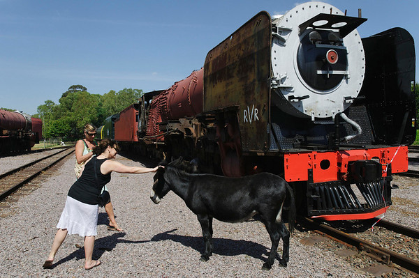 Cindy, Nancy, and friend, Rovos Rail, S. Africa