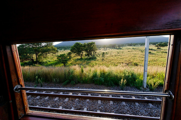 early morning, Rovos Rail, S. Africa
