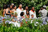 wedding at church in Franschhook, S. Africa