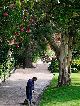DAY 7:  groundskeeper, Mount Nelson Hotel, Cape Town, S. Africa