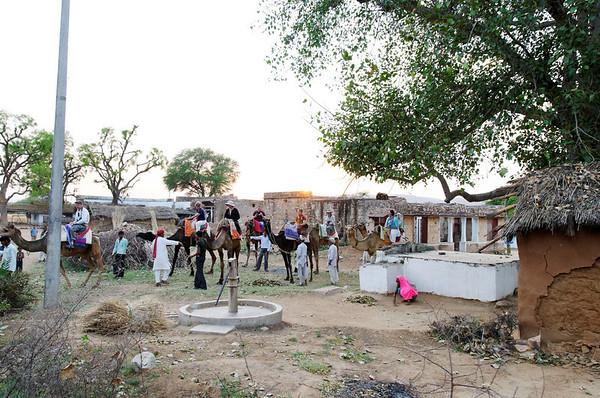 The camel caravan assembled, Kalakho