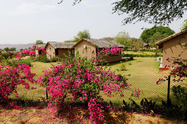 Kalakho Foreign Tourist Camping Ground and cabins