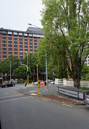 University of Auckland is across from our hotel, the Pullman