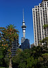 DAY 22: Trip to Waiheke Island, wine tasting; Sky Tower