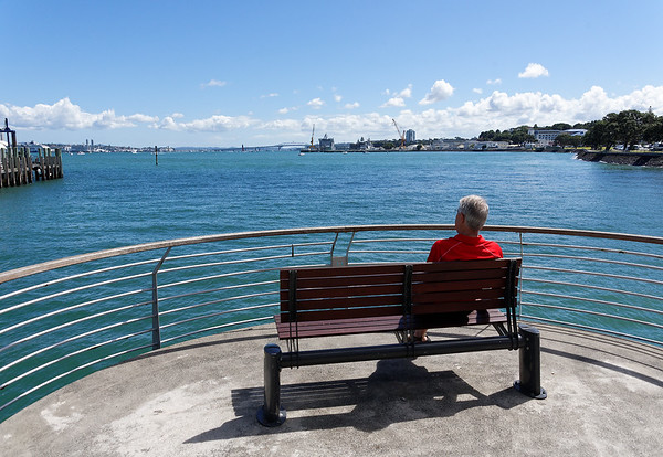 Jerry looking out towards Auckland