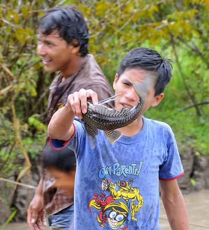 And here is a walking catfish, Yucuruchi, Rio Ucayalli
