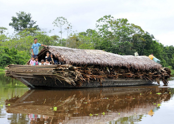 Boat carrying family & roof thatching, Rio Tapiche, The Amazon, Peru