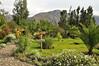 Garden, Sol y Luna Hotel, Urubamba Valley, Peru