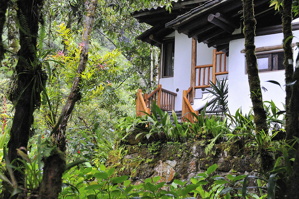 stairs to my room,12-acre nature trail, Inkaterra Hotel, Aguas Calientes, Peru