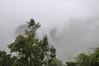 shrouded in mist, Machu Picchu, Peru