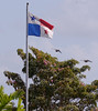 Panamanian flag - red for the liberals, blue for the conservatives, and white for the peace in between