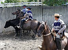 Las Olguitas, Chile - rather than roping, they trap the steer between them