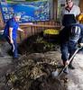 Chiloé Island, Chile - uncovering the curanto