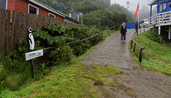 Chiloé Island, Chile - restaurant entrance with the Chilean rhubarb