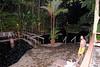 Ecotermales Hot Springs, night dip and dinner