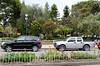 Chordeleg park, hibiscus, angel trumpet, and bottlebrush