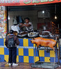"""Street food in Cuenca - note the """"cuys"""" (guinea pigs) and the placement of the """"cuchillo en el cerdo"""" (knife in the pig)"""
