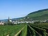 Vineyards from bus - Frankfurt to Bernkastel