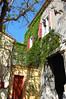 Scenic Arles