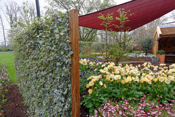 Keukenhof Gardens; living screen and sail