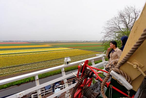 Keukenhof Gardens; tourists enjoy the view