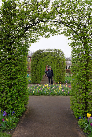 Keukenhof Gardens; Suzanne, tulips, and living arbors