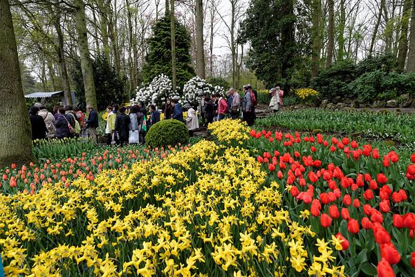 Keukenhof Gardens; tourists and flowers