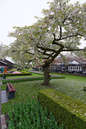 Keukenhof Gardens; indoor flower exhibit to the left and cafe to the right