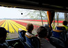 En route to Keukenhof Gardens;  fields of flowers