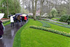 Keukenhof Gardens; note the dyed edges of the grass
