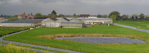 Toward The Hague; town of Gouda and greenhouses