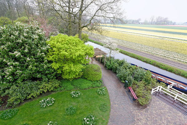 Keukenhof Gardens; another view from the top of the windmill