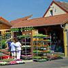 Dorog - Virágüzletek (flower shop)