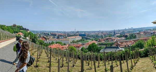 Panorama of Prague from St. Wenceslas Vineyard