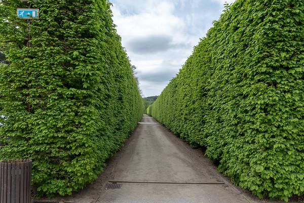 Cesky Krumlov - the Castle Garden