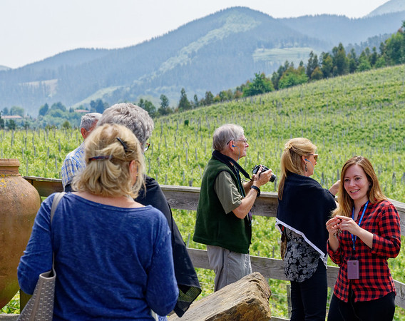Bodega Berroja Winery, Basque Country, Spain  - Natalia