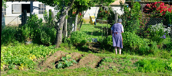 outside Santiago de Compostela Spain - tending her spring garden