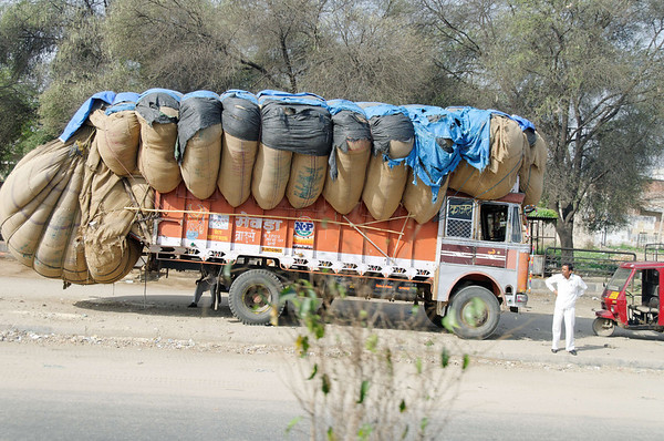 Double wow!, on the road to Ranthambore