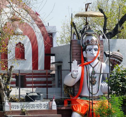 Monkey deity (one of 330 million), Delhi