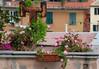 Rooftop & flowers Genova, Italy