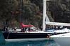 Harbor scene Portofino, Italy