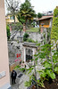 small housetop garden above steep steps, Bellagio