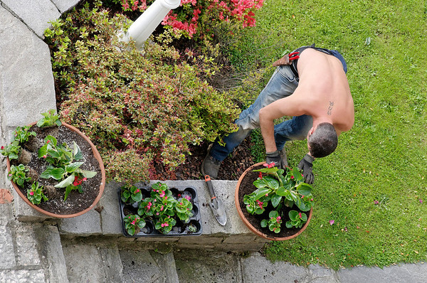 DAY 3:  gardener preparing flower bed, Cernobbio Italy.