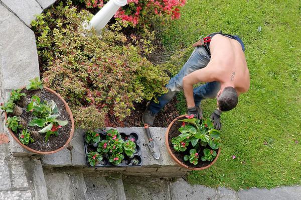 DAY 3:  gardener preparing flower bed, Cernobbio Italy.