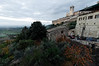 Assisi, Italy, persimmon trees and the church