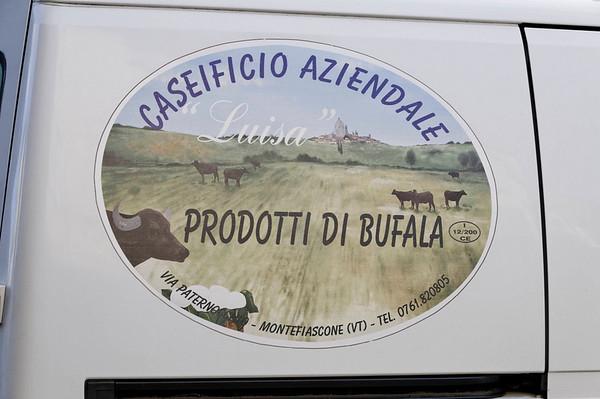 """Orvieto, Italy; Italian """"Bufala"""" is water buffalo"""