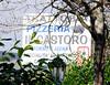 wonderful local restaurant near Preci, excellent cinghiale and tartufo_DSC8783